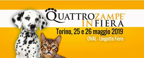 quattrozampeinfiera_torino-2