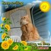 /~shared/avatars/19871665015166/avatar_1.img