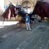 /~shared/avatars/20529216029654/avatar_1.img
