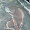 /~shared/avatars/24023528813636/avatar_1.img