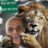 Avatar di Davide Meneguzzi