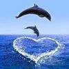 /~shared/avatars/4070950941079/avatar_1.img