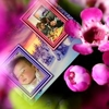 /~shared/avatars/42948118198036/avatar_1.img
