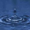 /~shared/avatars/50578703666534/avatar_1.img