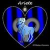 /~shared/avatars/58621434364570/avatar_1.img