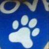 /~shared/avatars/59165098259781/avatar_1.img
