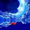 /~shared/avatars/65503734593366/avatar_1.img