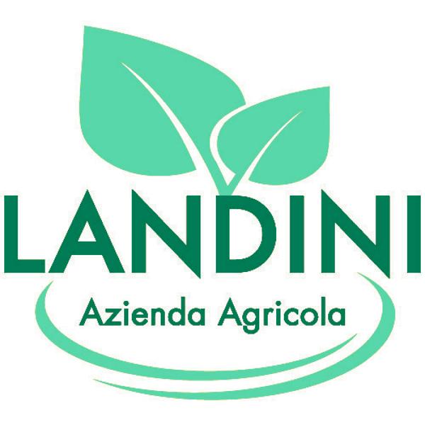 Azienda agricola Landini